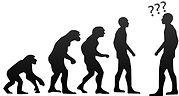 Human_evolution_question.jpeg