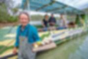 OystersSapphire-30012015-DeeKramer-211 (