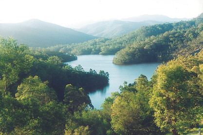 Explore Brogo Dam