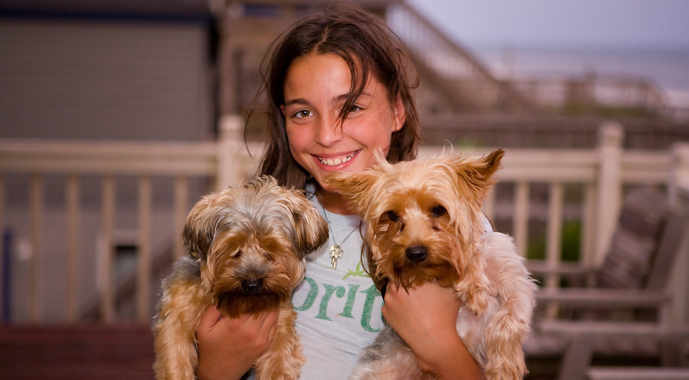adorable-animals-canine-161462.jpg