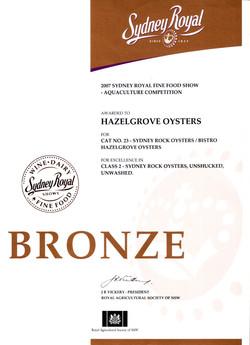Bronze+2007