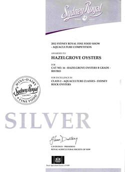 2013+Silver+award+3