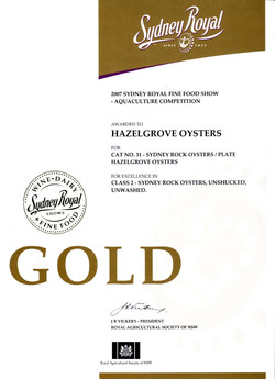 Gold+2007
