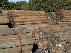 Treated Timber Posts