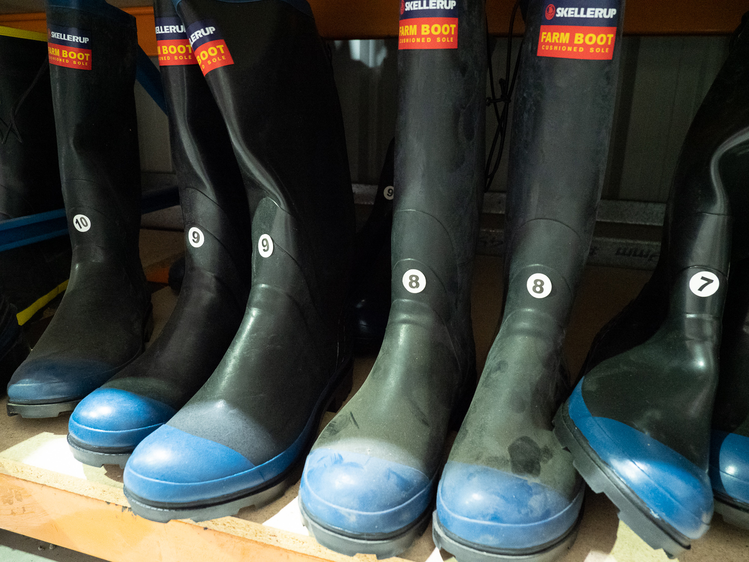 Gumboots, Workboots