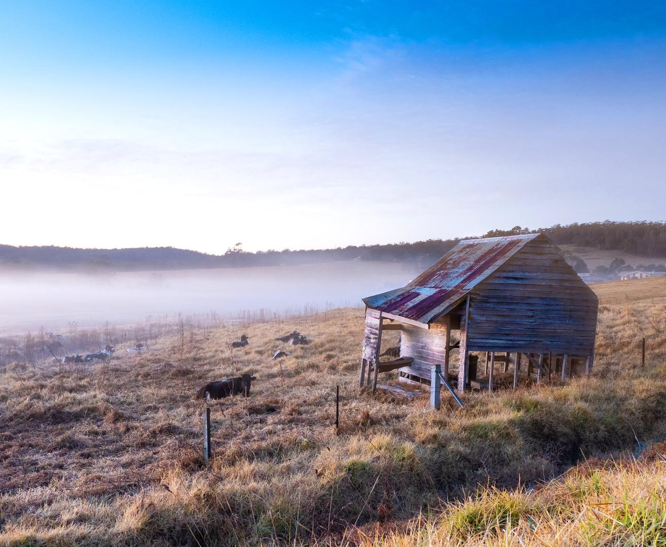 Old Hut South Pambula