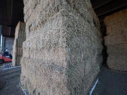 Hay & Grain - bulk available