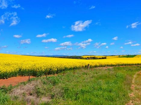 Hilltop Region Colours
