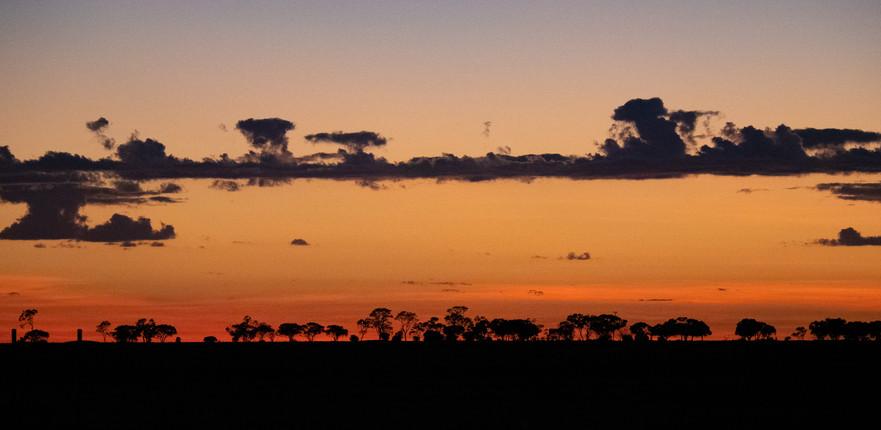 Longreach sunrise