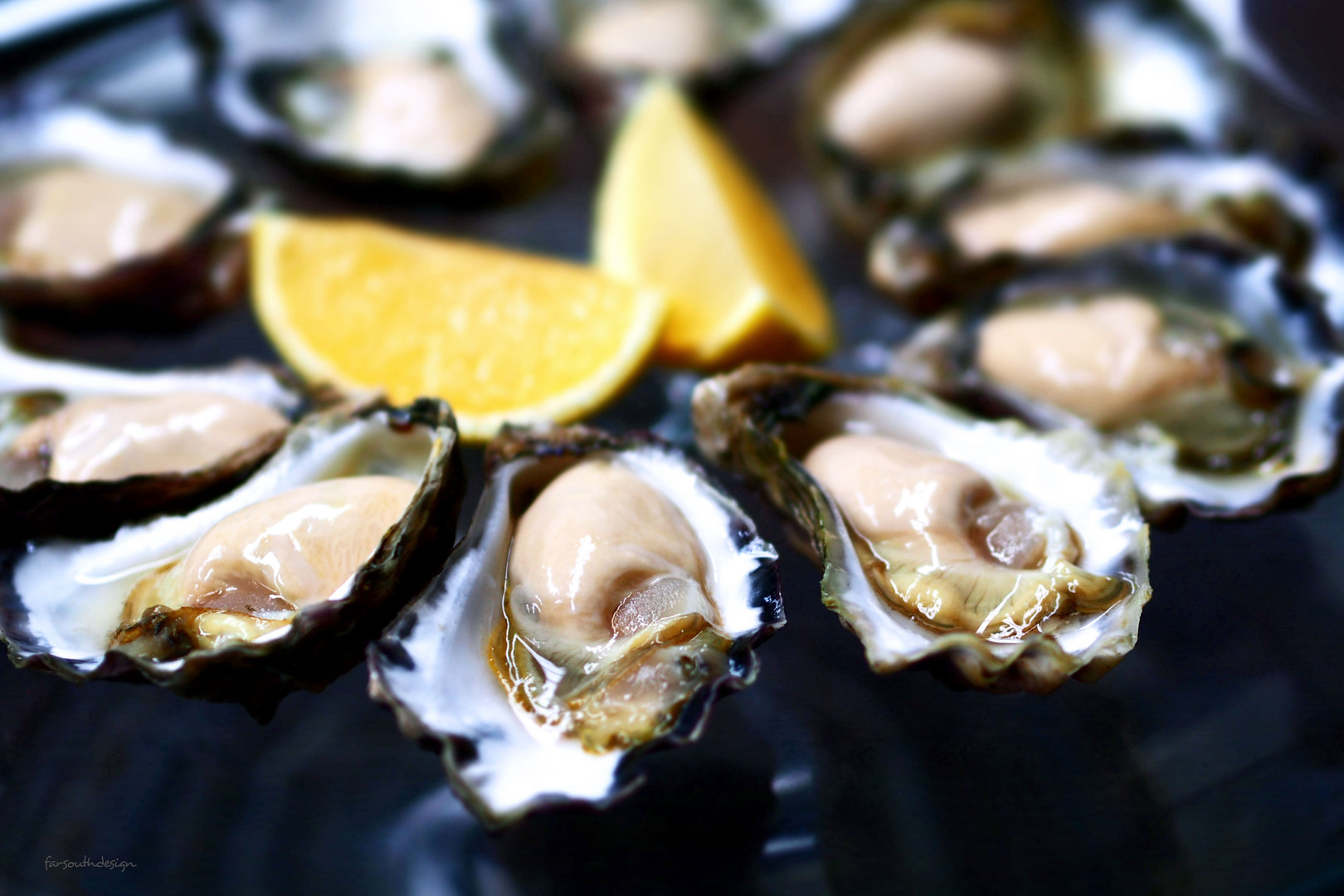 Premium Oysters