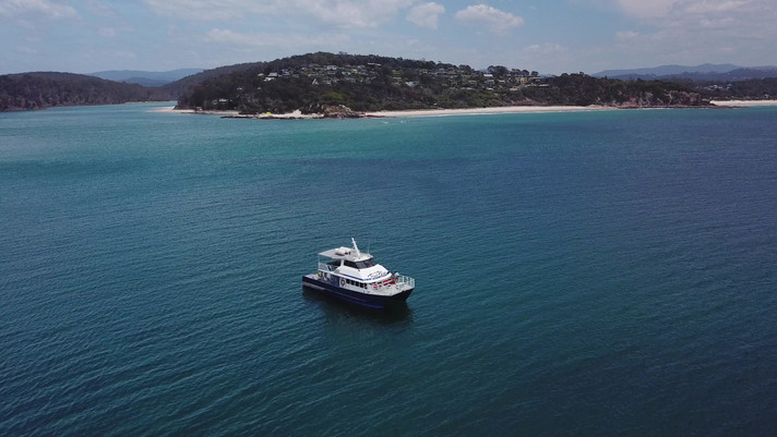 Sapphire Coast Discovery Cruises