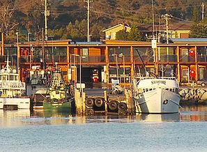 Bermagui Fishermans Wharf.jpg