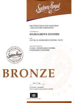 Bronze+2008+2