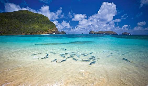 Lord Howe beauty