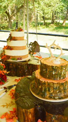 Fall Wedding Cake with Hand Made Leaves and Tree Trunk Groom's Cake