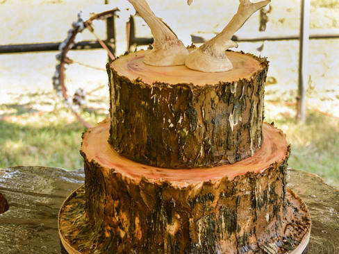 Tree Trunk Groom's Cake with Deer Horns Topper