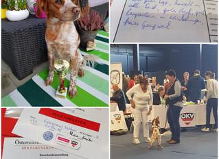 Nina erfolgreich auf Ausstellung