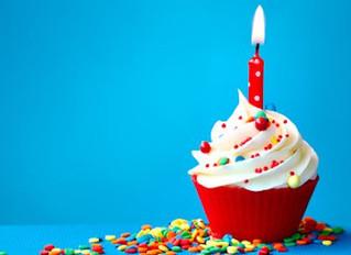 1. Geburtstag von HUNDherum positiv!!!