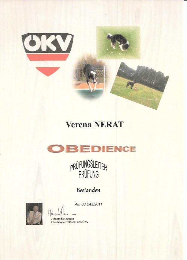 Obedience Prüfungsleiter