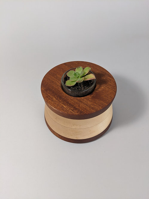 Honey Pot | Sapele + Maple