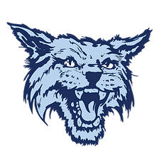 wildcattransparent.png