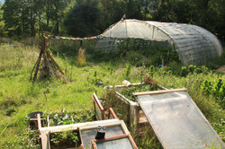 The vege garden and tunnel house