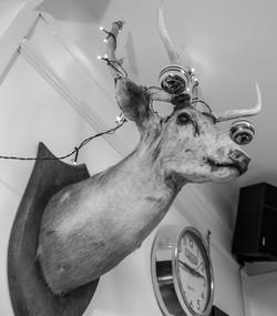 Wall art at Bexhill Barbershop