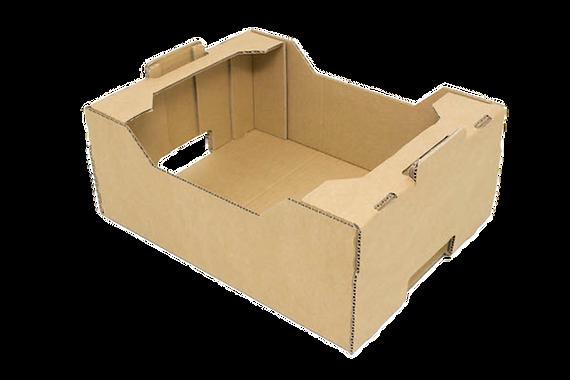 caja-frutas (1).png