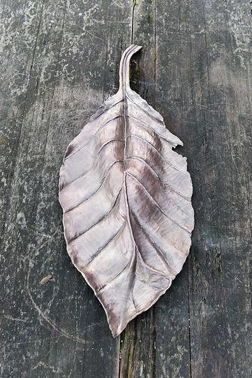 Isabelle de La Touche - swiss sculptor - bronze sculpture beech leaf - photo Myriam Ramel/www.lumieredujour.ch
