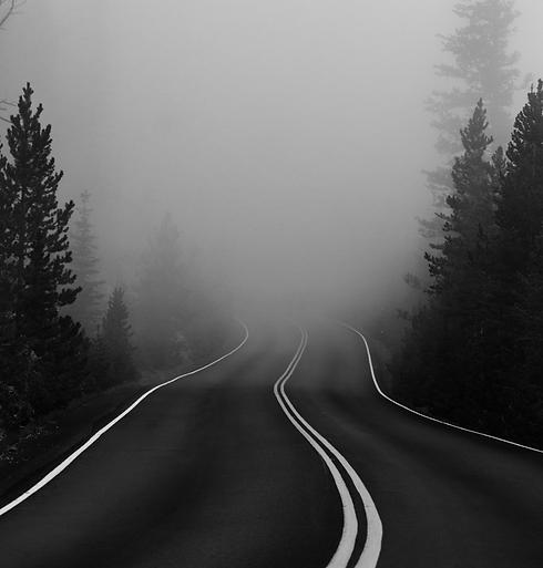 Foggy mountain road