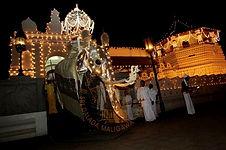 Private tours Sri lanka, driver hire,Chauffeur driven vehicles sri lanka, driver guide,car hire,Private Driver hire sri lanka,chauffeu,private guided tours,car hire,Van Hire