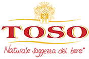 Toso S.P.A.png