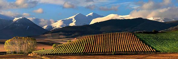 D.O.Rioja.png