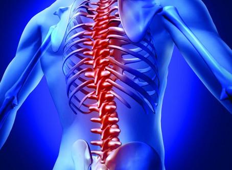 Low Back Pain, Explained!