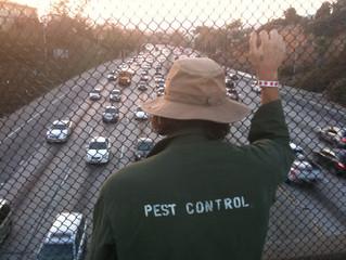Eric Gerber talks about his film, Pesticide.