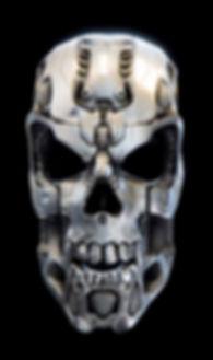 Silver Skull Tail Lights & Turn Signals
