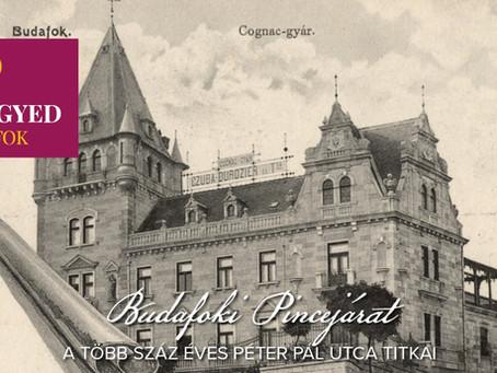Tematikus séta : A mesélő Péter Pál utcai házak