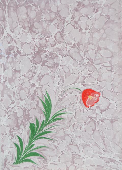 Red Tulip - Marbling