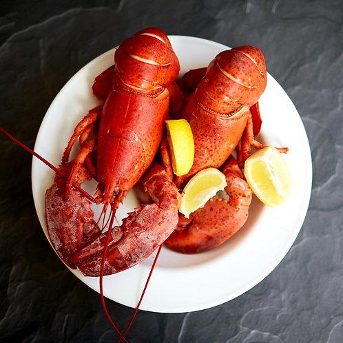 Boston Lobster (per pc)