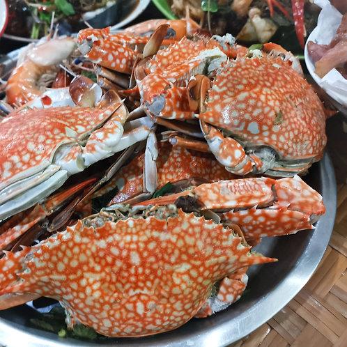 Flower Crab (per pc)