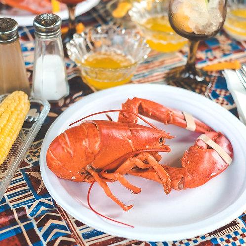 Boston Lobster (Frozen)