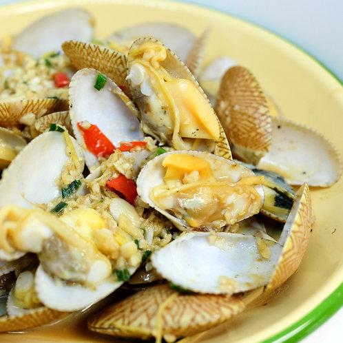 Flower clam / Asari clam