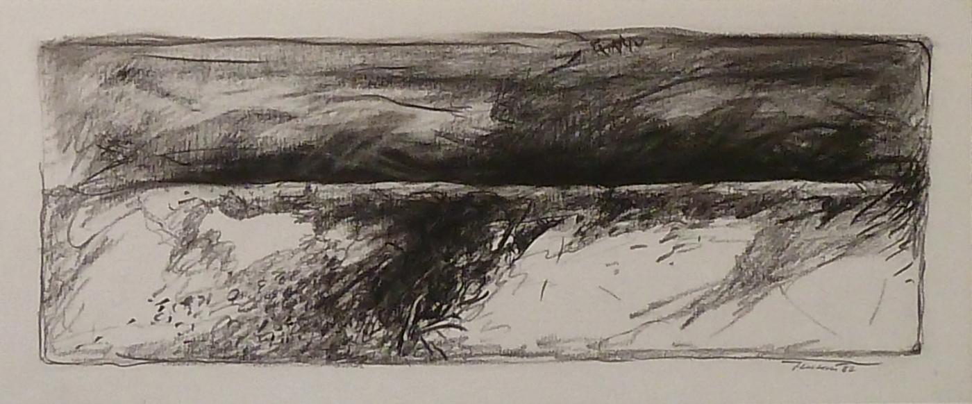 Dune in Olanda 1982. Disegno a Conté 14x33