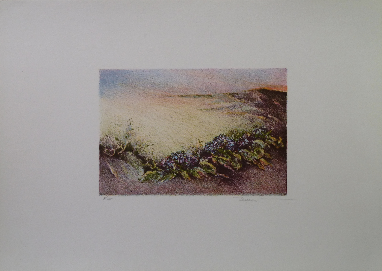 Ortensie nella valle 3, 1987. Litografia 5 colori. 11,7x17, foglio 25x35