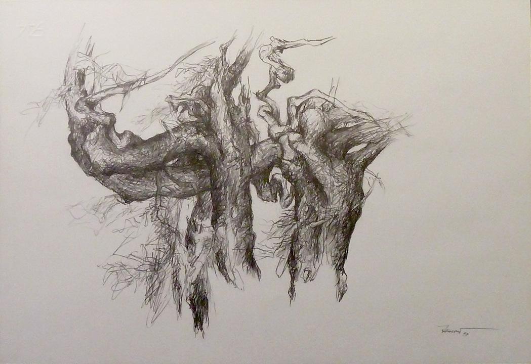 Alberi di roccolo 1997 II. Disegno a matita 33x47,5