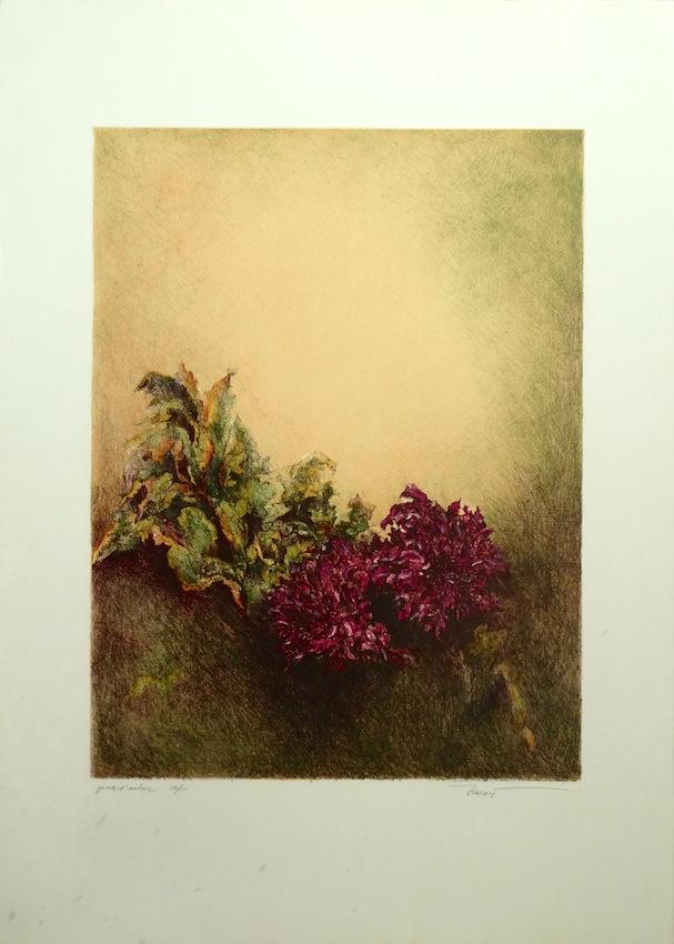 Dalie 1984. Litografia 9 colori 48x36, foglio 70x50