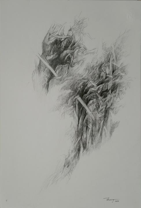 Alberi di roccolo II, 8/2020. Disegno a matita 50x35