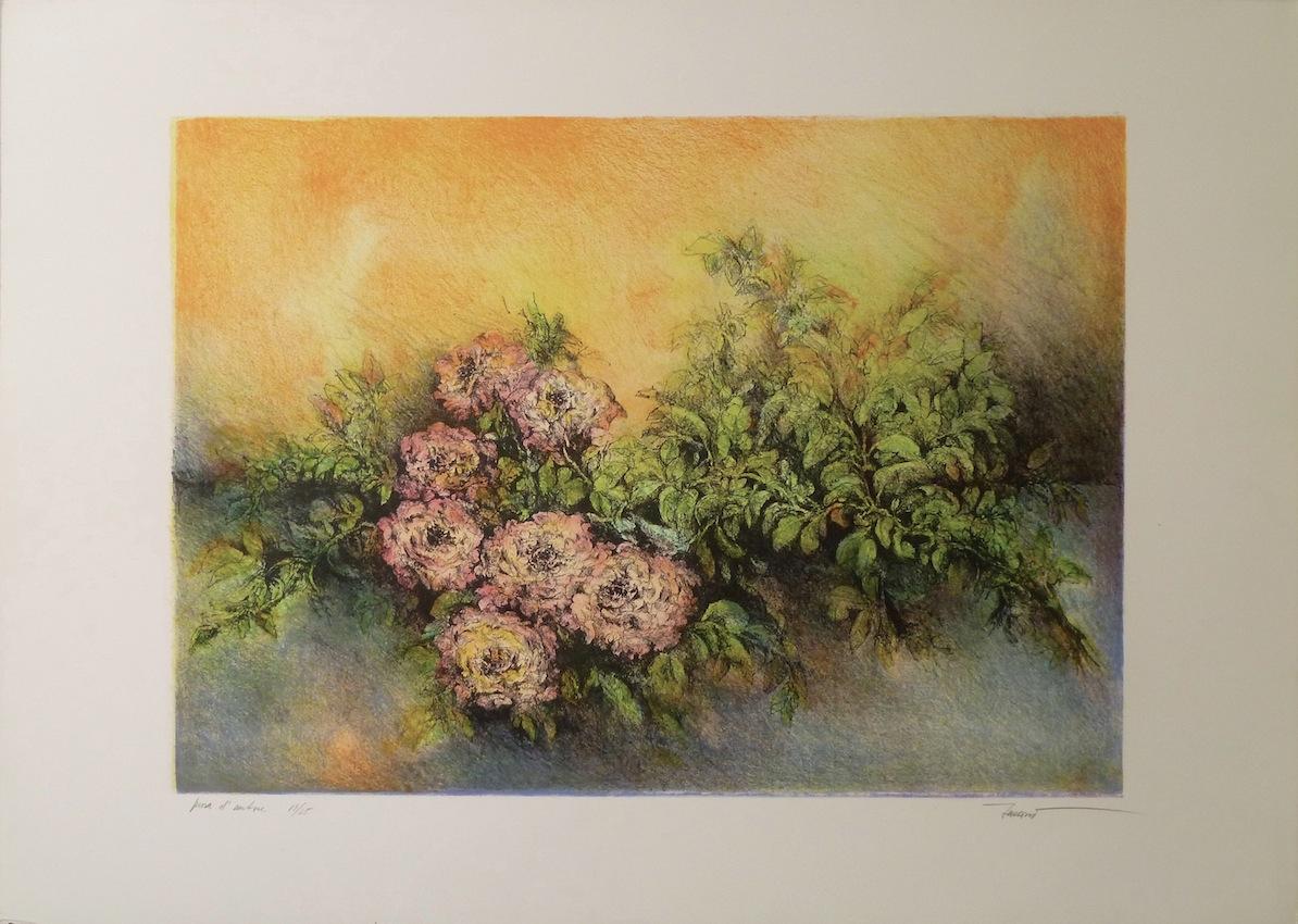 Variazioni sulla rosa 1992 Litografia 9 colori 35x50 foglio 50x70