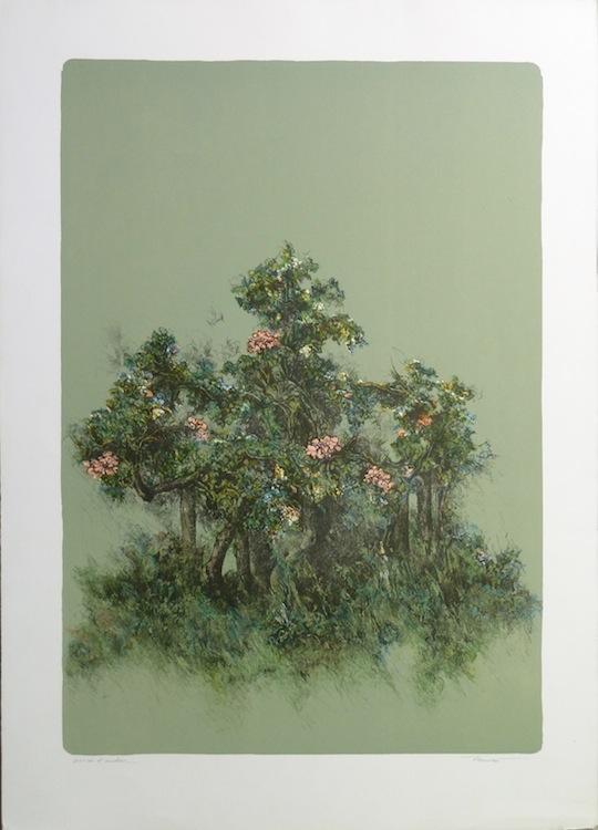 Piccolo roseto 1982. Litografia 60x40, foglio 70x50