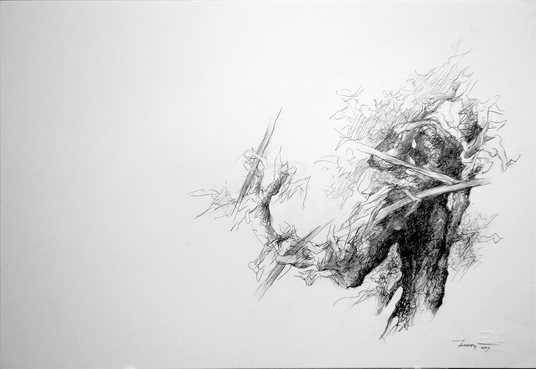 Alberi di roccolo 2009 I. Disegno a matita su carta 33x48
